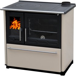 Wood stove with cooking...